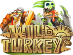 Pay Wild Turkey Video Slot